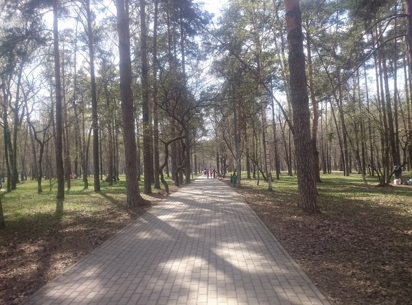 Парк отдыха Ветеранов на Лобненской 13 убивают ко Дню Победы