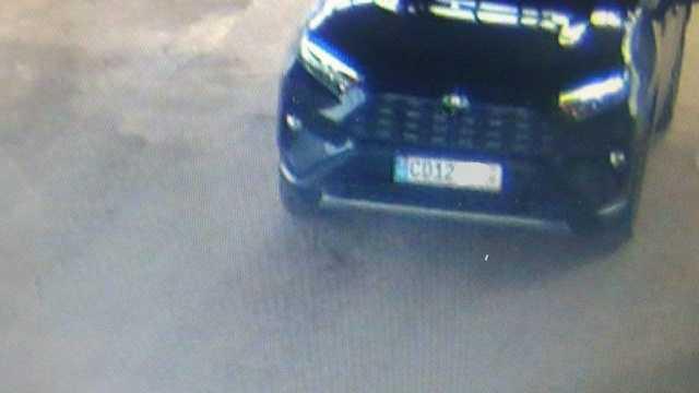 Чауса ввезли в Украину на машине посольства?