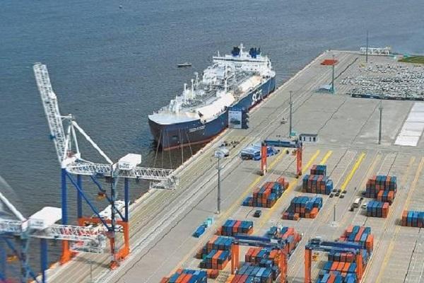 Президентские дачи нашли в порту