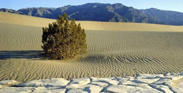 В Долине смерти зафиксирована одна из самых высоких температур на Земле