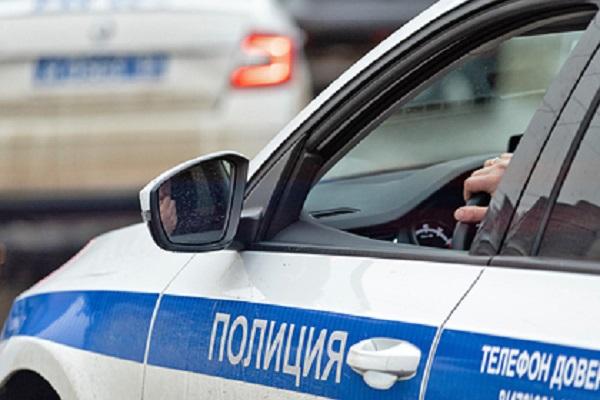 Полицейские отбили у насильника пожилую россиянку
