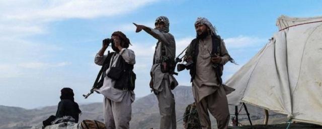 Будет эмират? Чего ждать от Афганистана