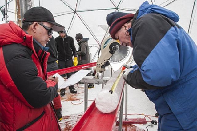 В древнем льду нашли неизвестные науке вирусы