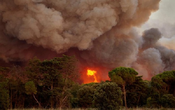 В Испании вспыхнули сразу несколько крупных лесных пожаров
