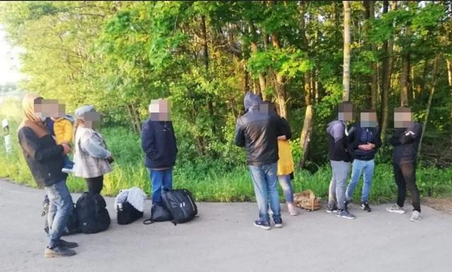 Эстония направит в Литву беспилотники для борьбы с мигрантами на границе с Беларусью