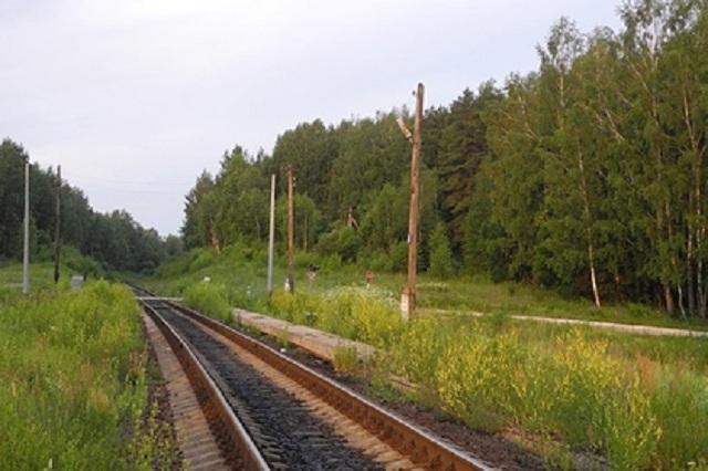 Следовавший из Адлера в Москву поезд столкнулся с грузовиком