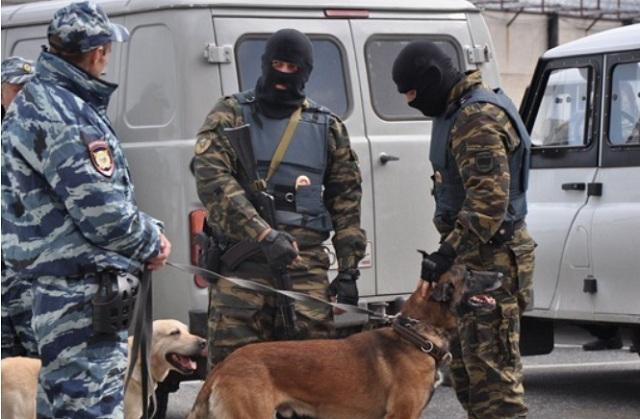 В Тюмени бойцы ФСБ вынесли из музея частных коллекций 2,5 тыс. ценных экспонатов