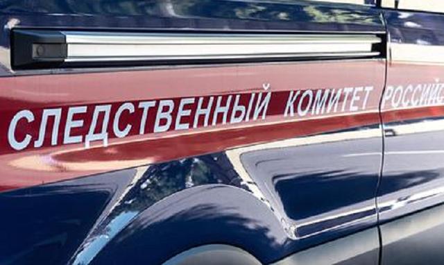 Россиянина направят в психбольницу за изнасилование дочери и нелегальный арсенал