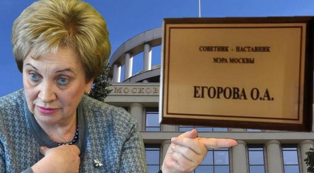 Советы вместо приговоров: проигранная война и неудовлетворенные амбиции Ольги Егоровой