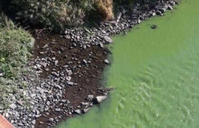 В Златоусте река Ай окрасилась в грязно-зеленый цвет